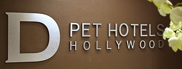 LUXURY HOTEL FOR DOGS: D PET HOTELS
